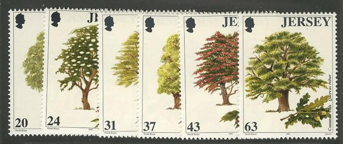 Джерси [imp-5456] 1