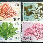 Tristan da Cunha [imp-6478] 3