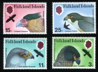 17702_falkland-islands-imp-6966
