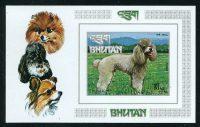 Бутан [imp-1898] 30