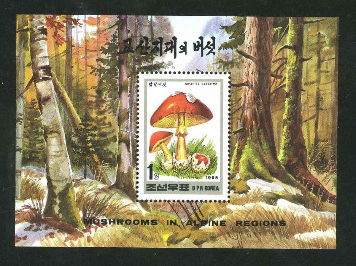 Корея [imp-10183] 1