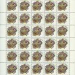 1993. Животные морей Тихоокеанского региона. [M-IV-104-108] 6