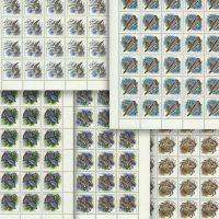 1993. Животные морей Тихоокеанского региона. [M-IV-104-108] 23