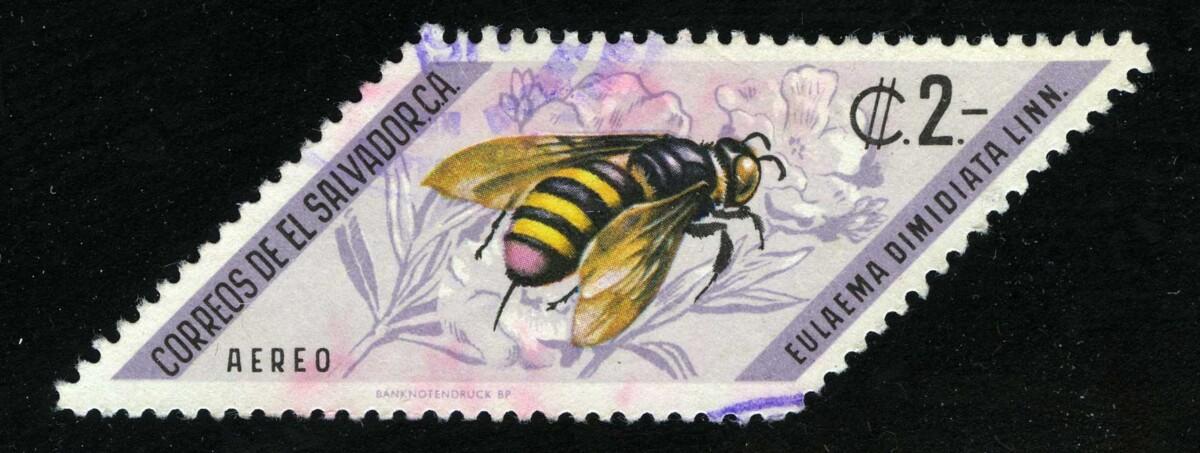 """1970. Сальвадор. Авиапочта. Серия """"Насекомые. Пчела (Eulaema dimidiata)"""", 1/3, (•) [SV1066_1] + 1"""