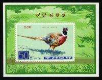 "1976. Северная Корея. Блок ""Фазан. Phasianus colchicus"", 82 x 69 mm, (//) [KPD1555_1] 26"