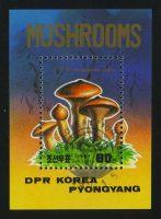 """1987. Северная Корея. Блок """"Грибы. Gomphidius rutilus"""", 50 x 70 mm, (//)** [KPD2911] 10"""