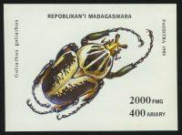 "1994. Мадагаскар. Блок ""Насекомые. Goliathus goliathus"", 100 x 70 mm, (//), ** [MG1729] 10"