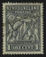 Атлантическая треска (Gadus morrhua)